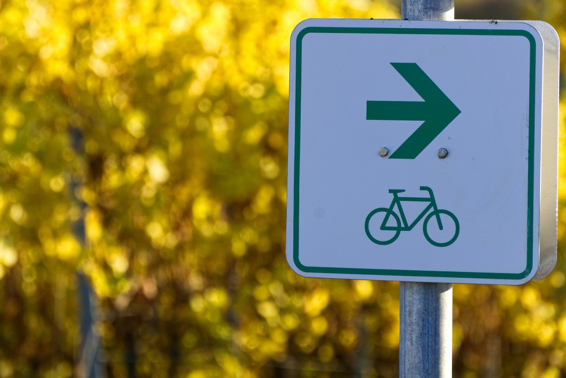 radweg bild von markus distelrath auf pixabay © Markus Distelrath auf Pixabay