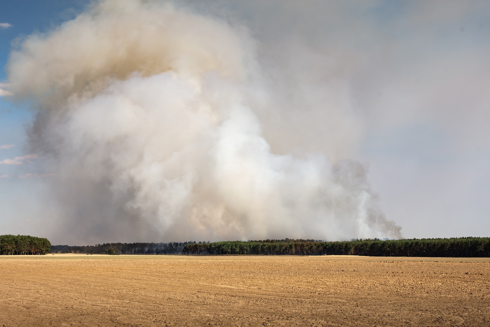 Symbolbild Waldbrand von Sven Lachmann auf Pixabay
