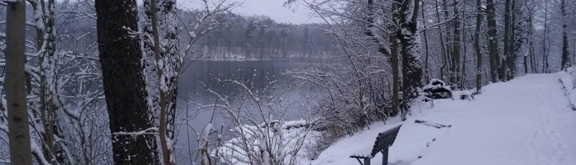 winter am straussee sabine olesch ©Sabine Olesch