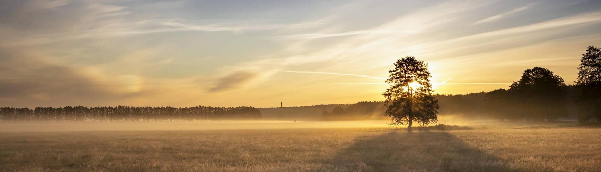 rotes luch 2 daniel joerendt ©Daniel Joerendt