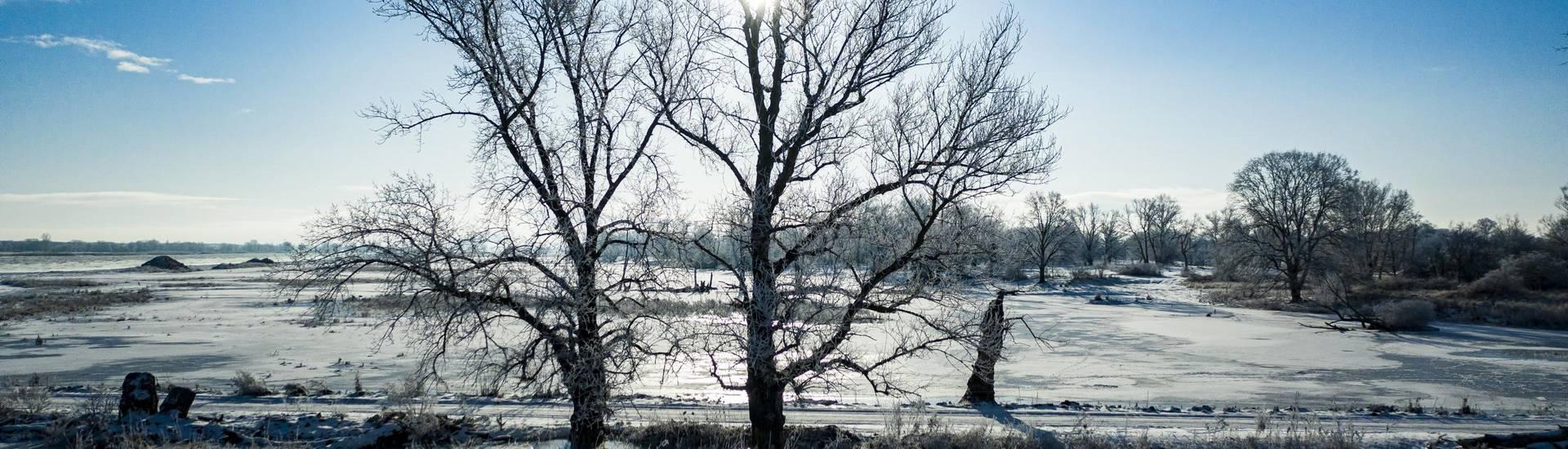 winter im oderbruch ©Daniel Joerendt