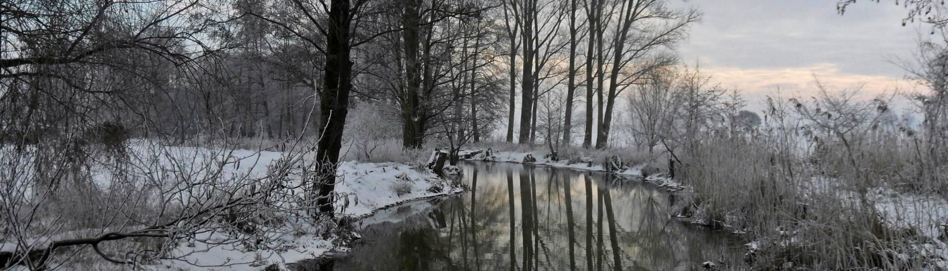 ©Simone Grieger